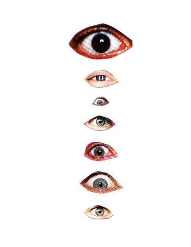 La_historia_del_ojo izquierdo6