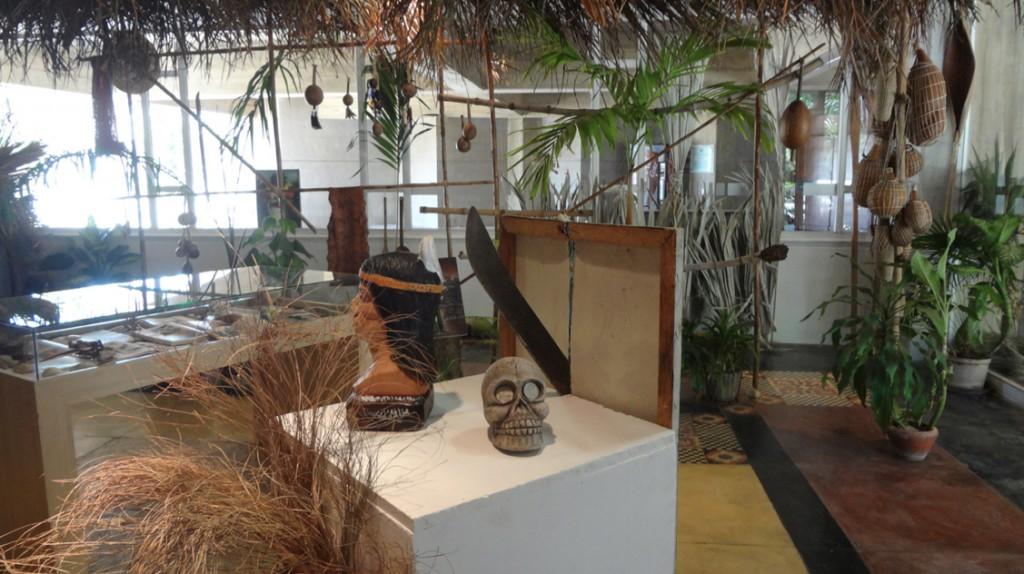 Muerte en la tierra tropical azul6MarcoMontiel-Soto