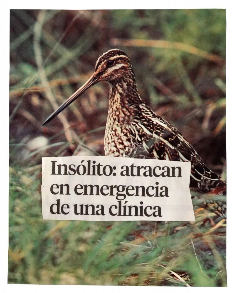 insolito atracan en emergencia de una clinicaMarcoMontiel-Soto