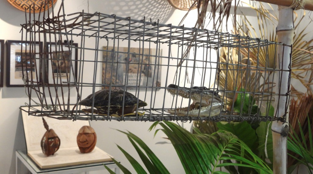 jaula tortuga caimanMarcoMontiel-Soto