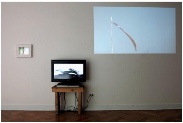 Marco Montiel-Soto, vista de instalación de los videos: Tela Leopardo; Bandera pendiendo de un hilo; Calavera percusión con costillas 1. Galería D21, Santiago, 2013